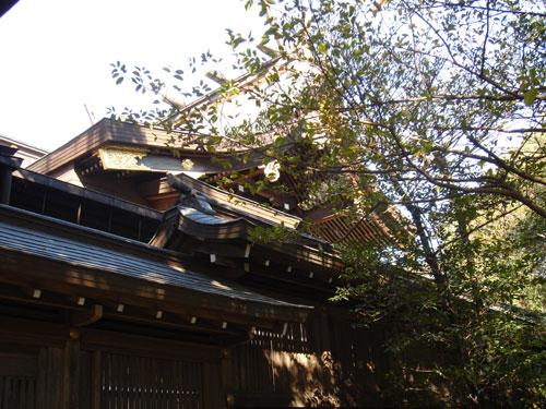 菊地神社本殿